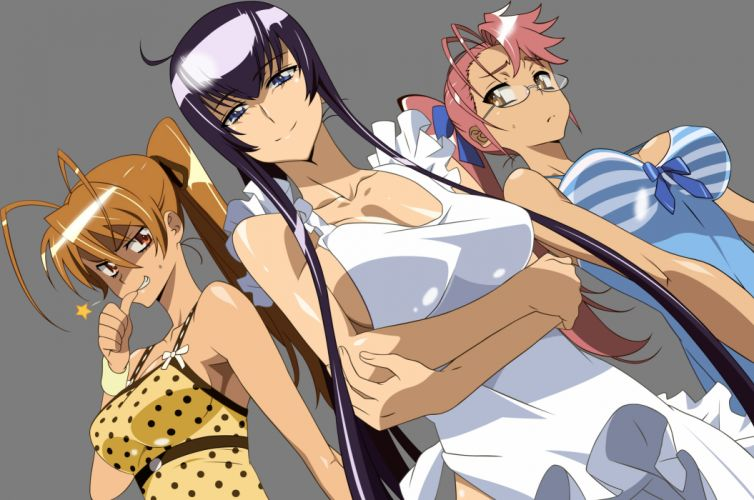 highschool of the dead blue eyes brown eyes brown hair busujima saeko glasses long hair miyamoto rei naked apron pink hair purple hair takagi saya transparent wallpaper