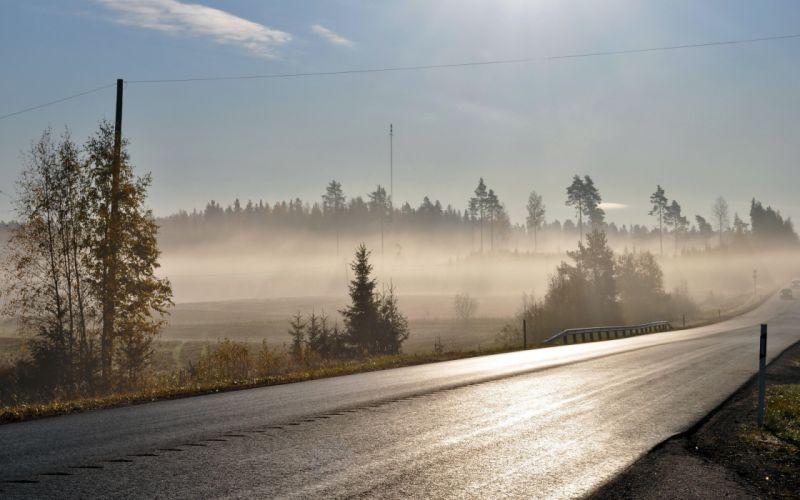 morning road fog wallpaper