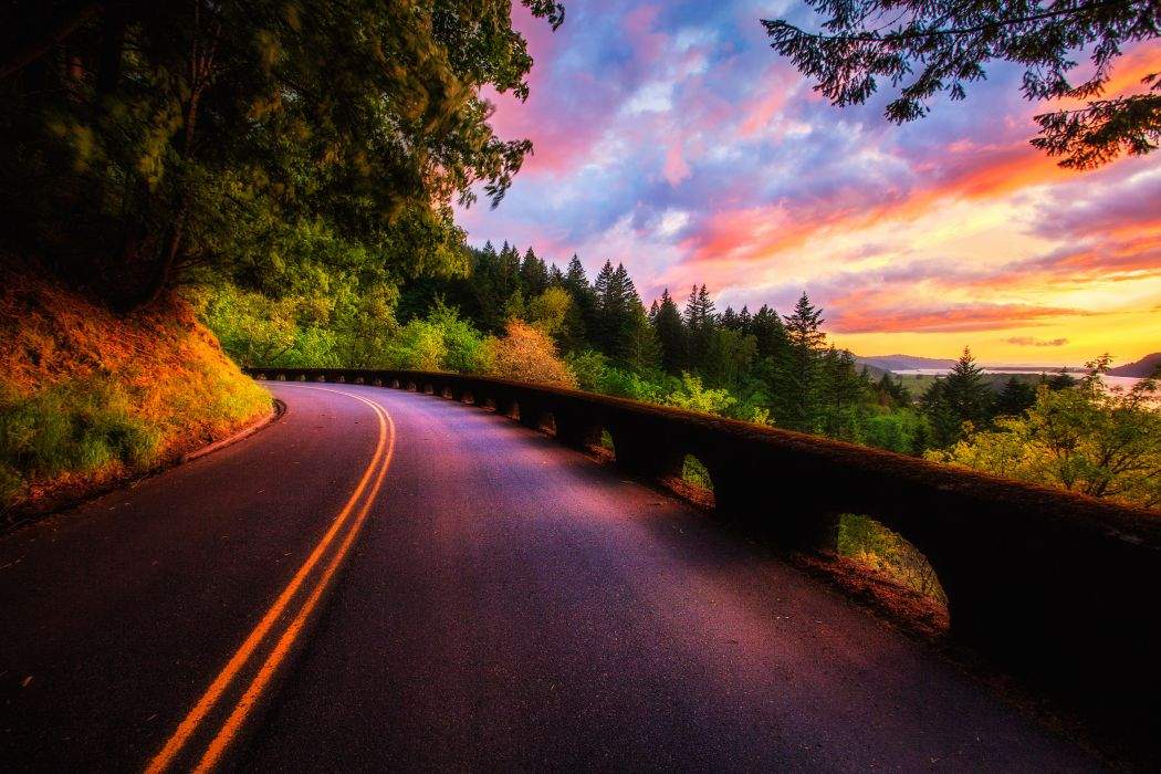 sunset forest colors road clouds trees view sky nature wallpaper