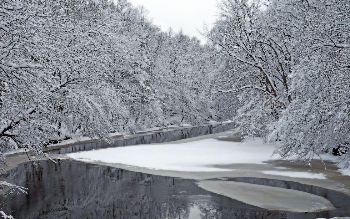 winter river trees landscape    g wallpaper