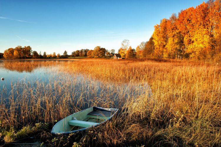 autumn boat lake trees houses wallpaper
