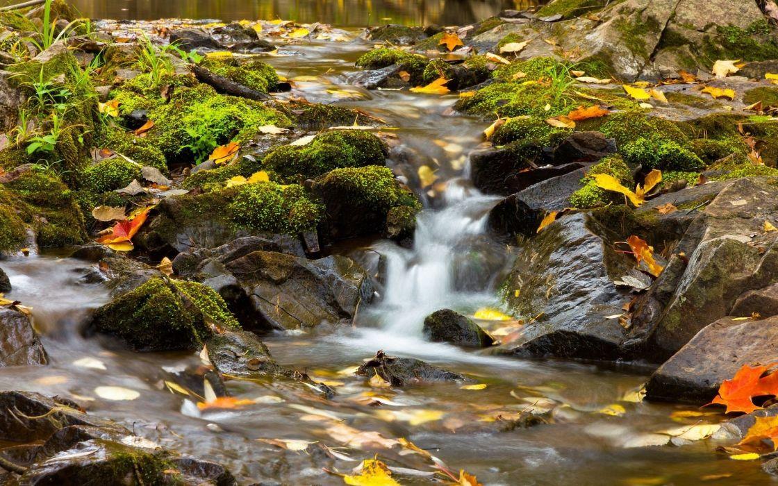 Minnesota stream river wallpaper