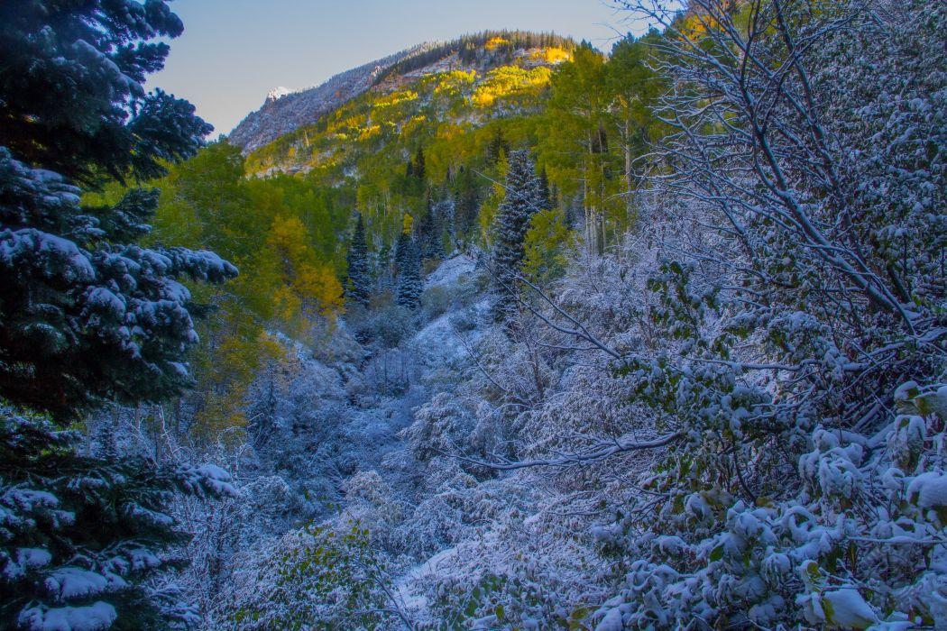 autumn mountains trees landscape winter snow wallpaper