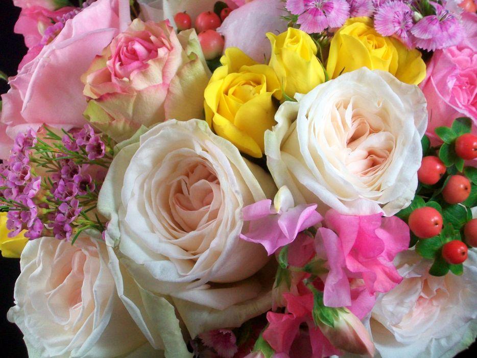 Bouquets Roses Closeup White Flower wallpaper