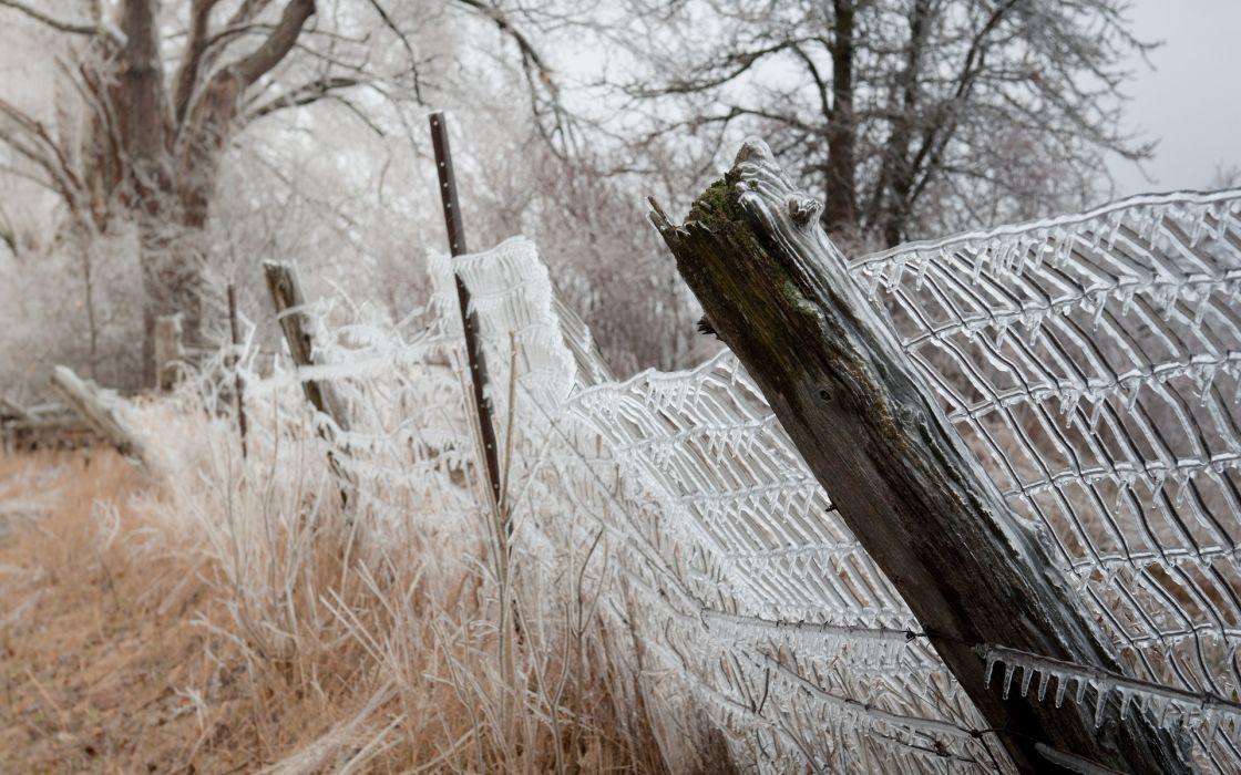 fence  ice  nature autumn winter wallpaper