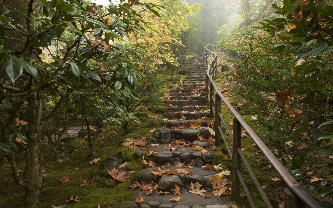 Path Trail Leaves Rail Trees autumn wallpaper