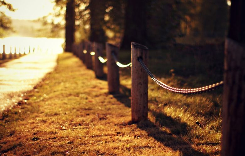 road grass lawn fence fence trees light nature autumn close-up blurred bokeh wallpaper