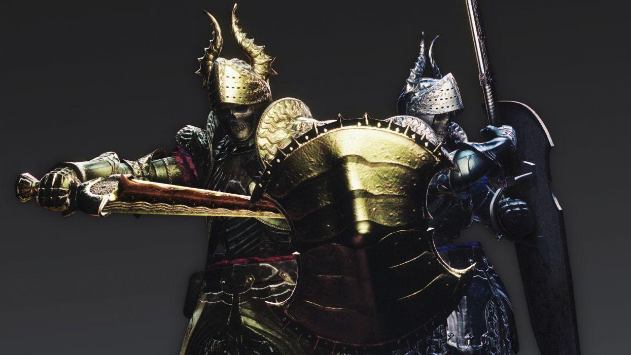 DRAGONS DOGMA fantasy game warrior armor       g wallpaper