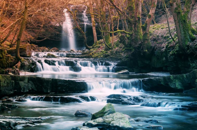 forest waterfall river landscape wallpaper