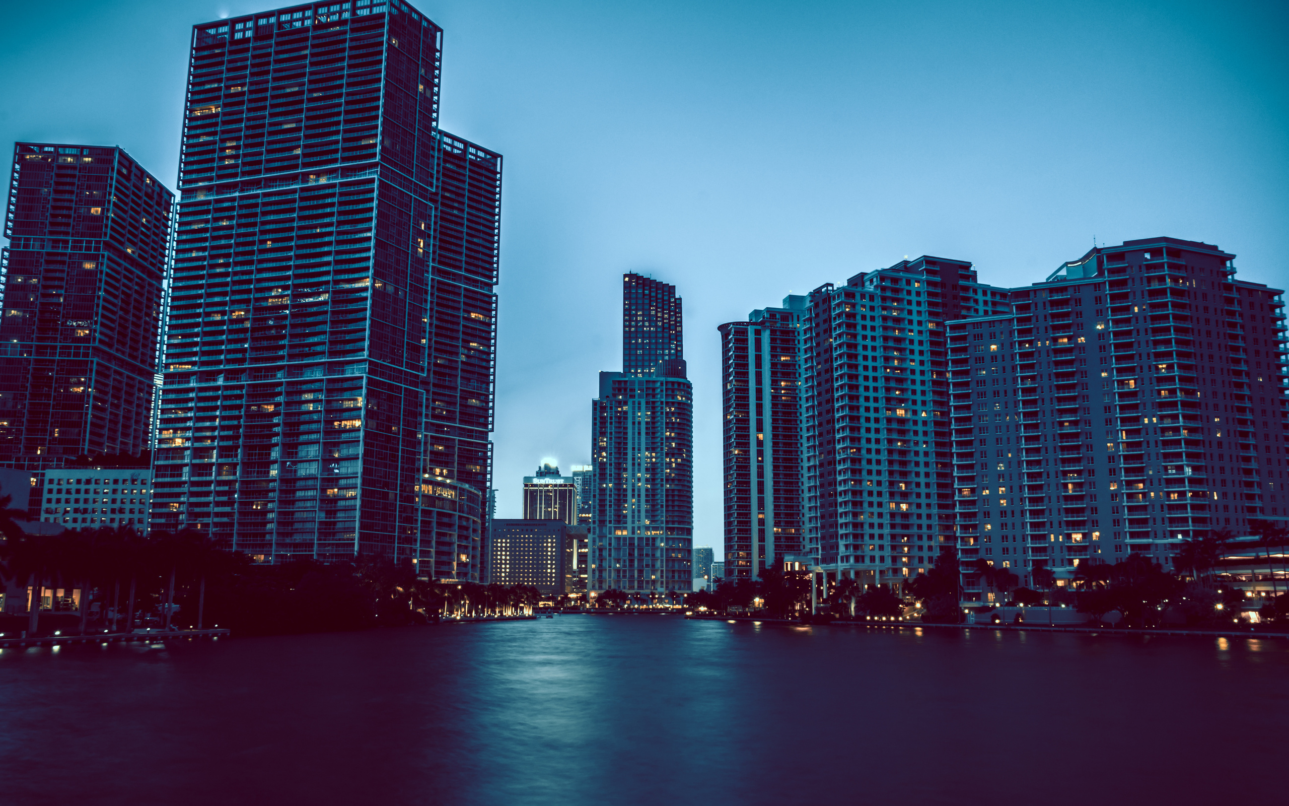 lights florida night miami florida miami wallpaper | 2560x1600
