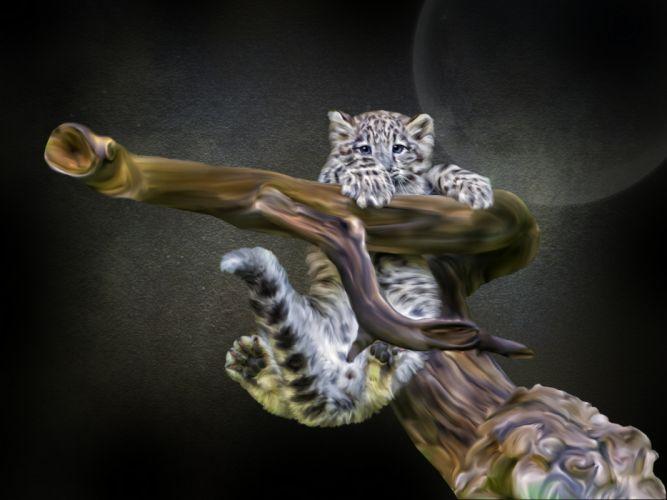 snow leopard cub snag Photoshop wallpaper