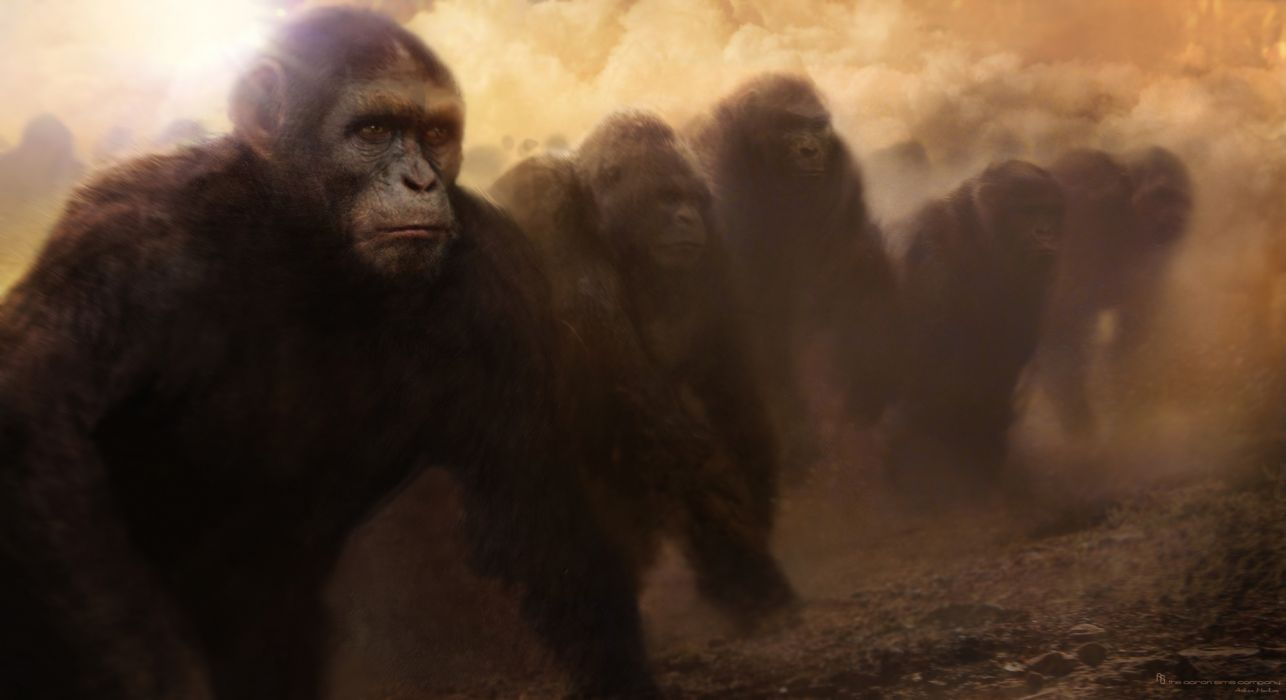 Dawn of the Planet of the Apes movie sci-fi monkey     d wallpaper