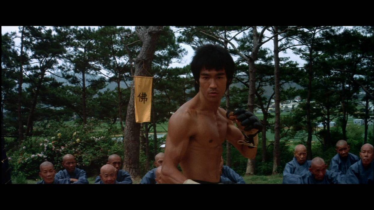 ENTER THE DRAGON bruce lee martial arts movie warrior     w wallpaper