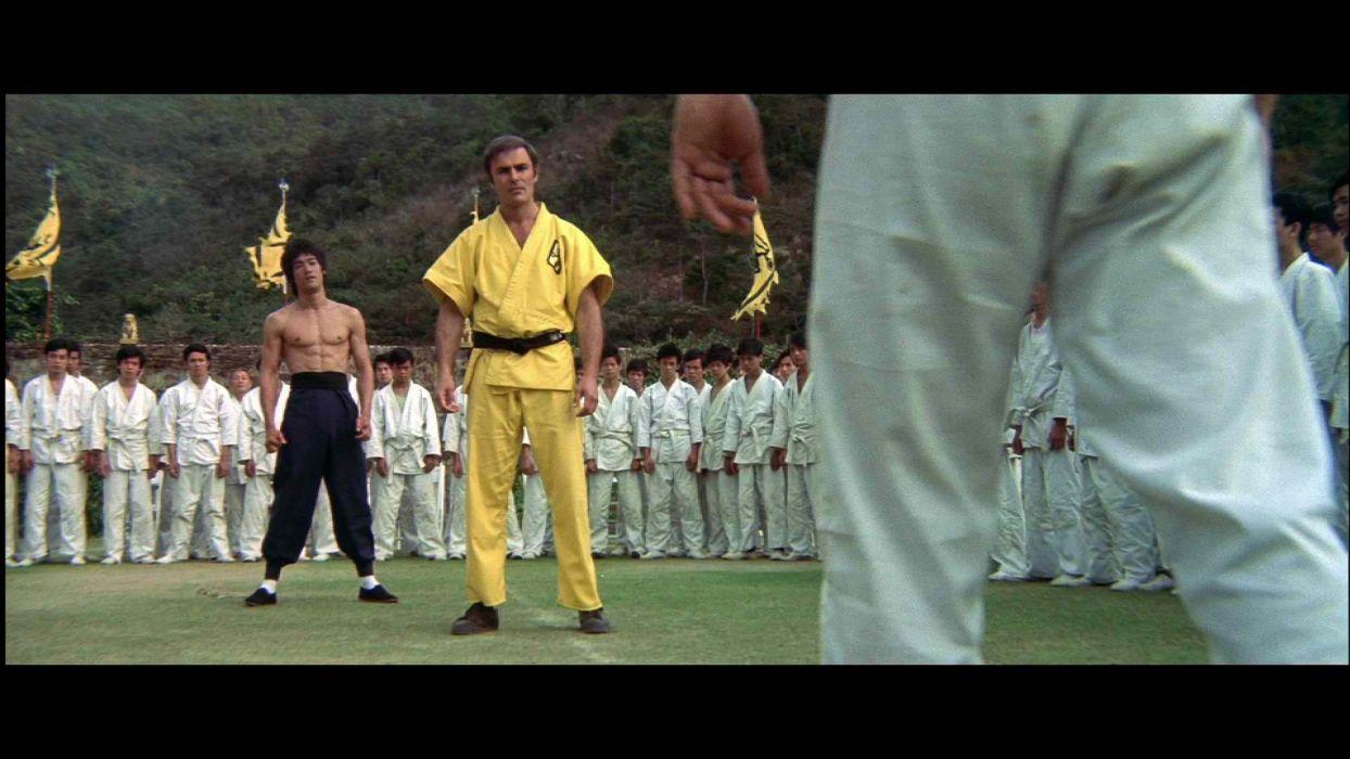 ENTER THE DRAGON bruce lee martial arts movie warrior   rw wallpaper