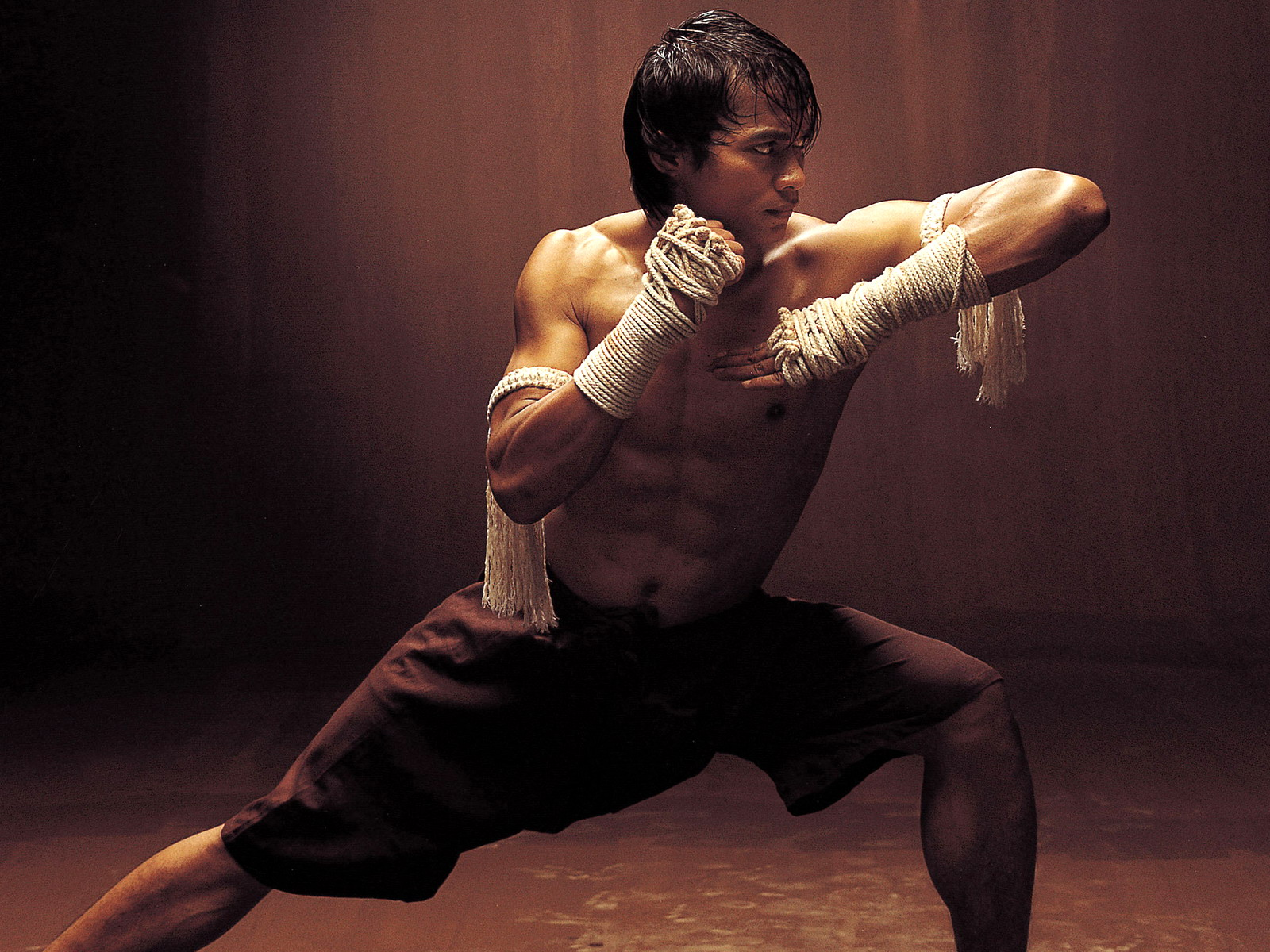 mixed martial arts vs traditional martial arts essay Karate is an individual japanese martial art form, whereas, martial arts in general comprises of all the forms of martial art and combat sports which have origins from china, japan and korea in simple terms, karate is one of the forms of martial arts.