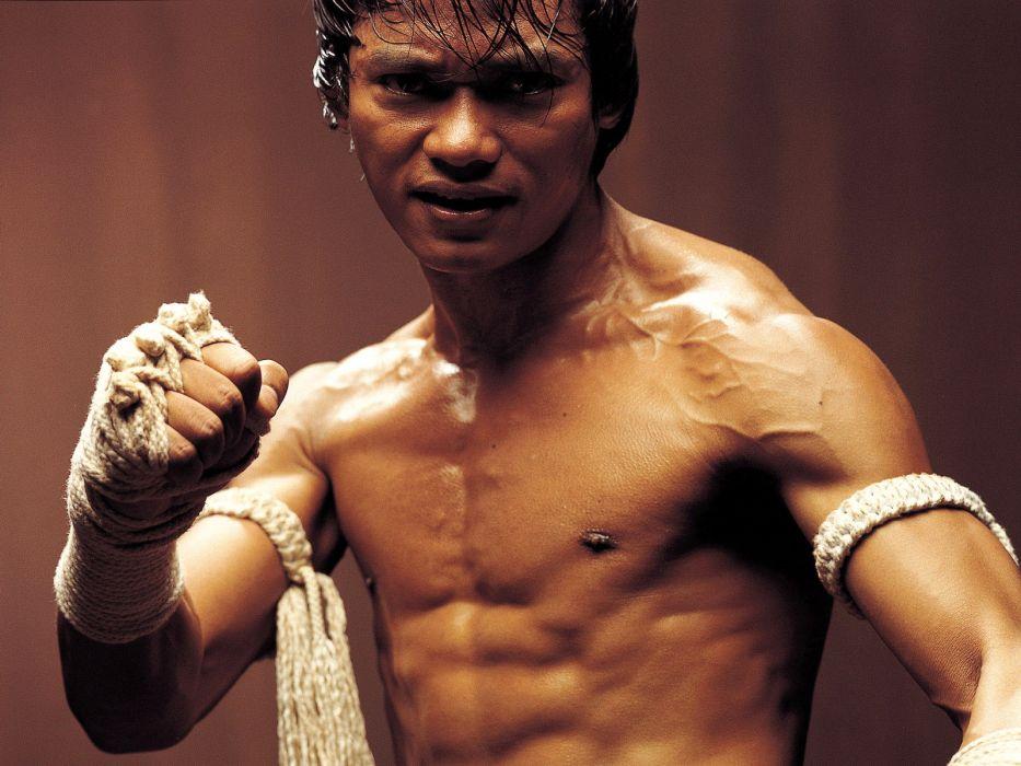 ONG-BAK martial arts ong bak tony jaa   gd wallpaper