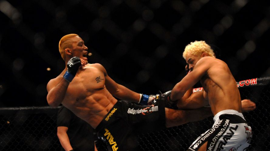 UFC mma martial arts battle g wallpaper