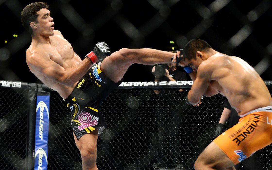UFC mma martial arts battle d wallpaper