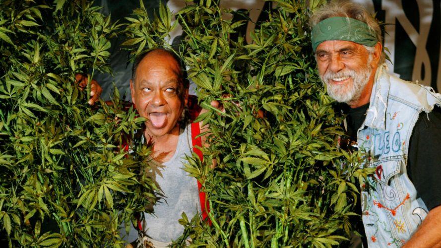 CHEECH AND CHONG comedy humor marijuana weed 420 r wallpaper