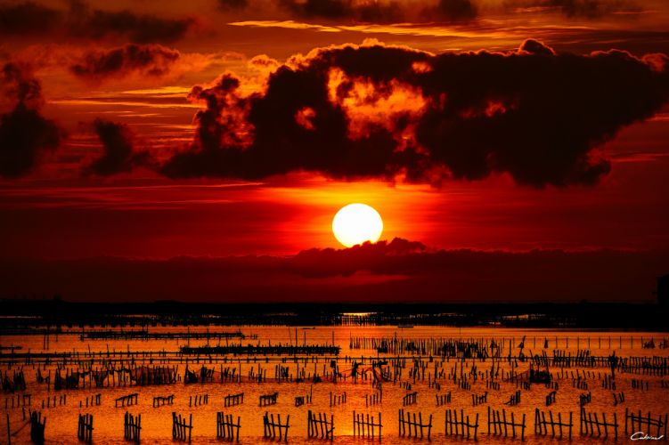sun sea bars sunset fence wallpaper