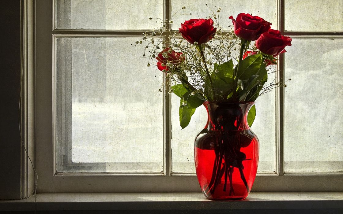Roses Vase Window Flowers wallpaper