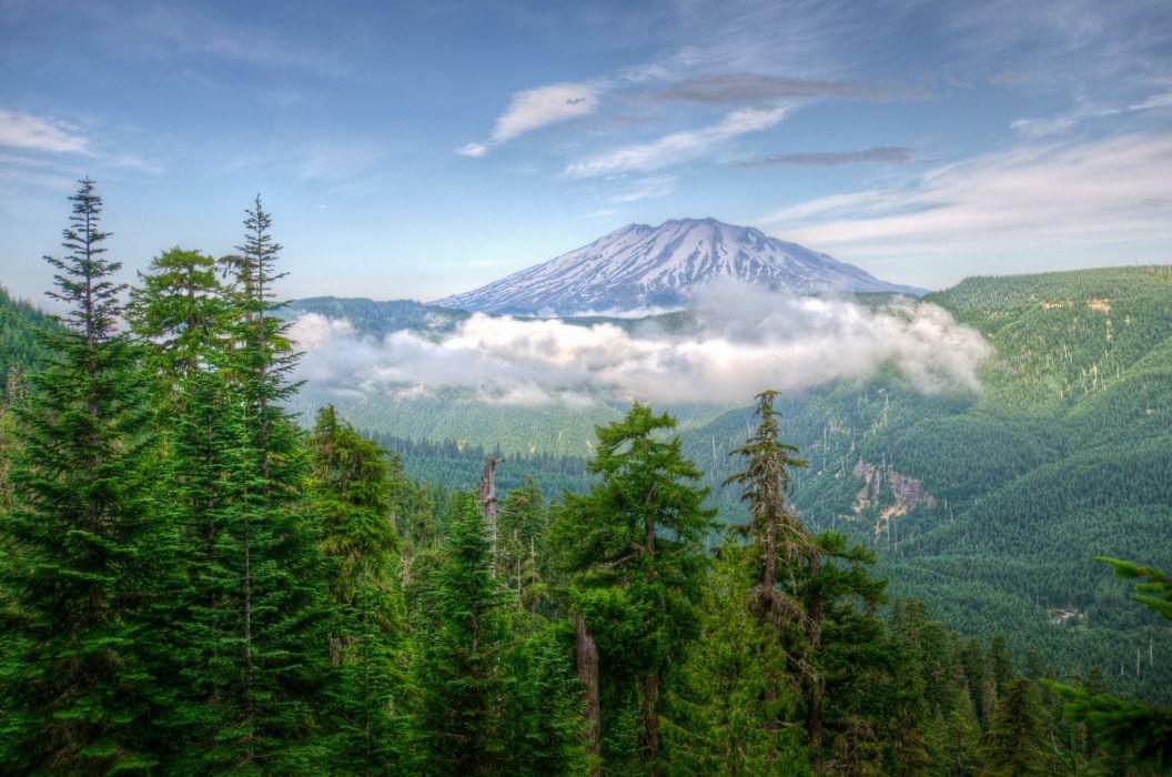 Scenery USA Mountains Forests Washington Nature wallpaper