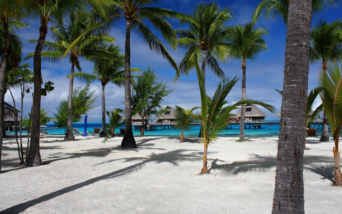 sea beach palm trees bungalows landscape wallpaper
