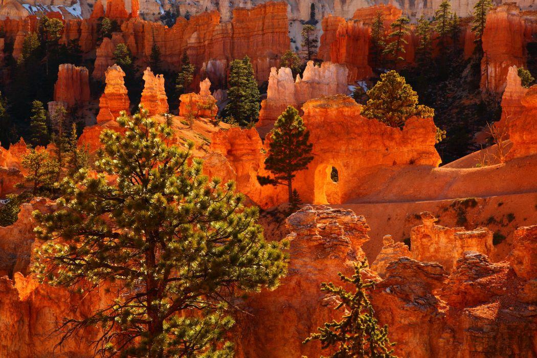 Parks USA Bryce Canyon Utah Canyon Nature wallpaper