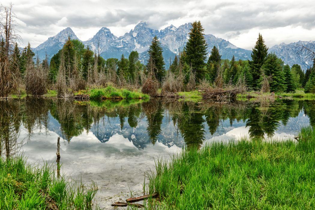 mountain forest lake wallpaper