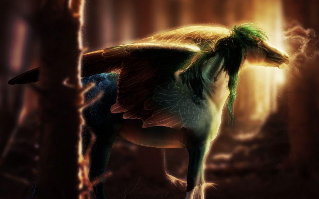 Magical Animals Pegasus Fantasy Wallpaper 3008x1880