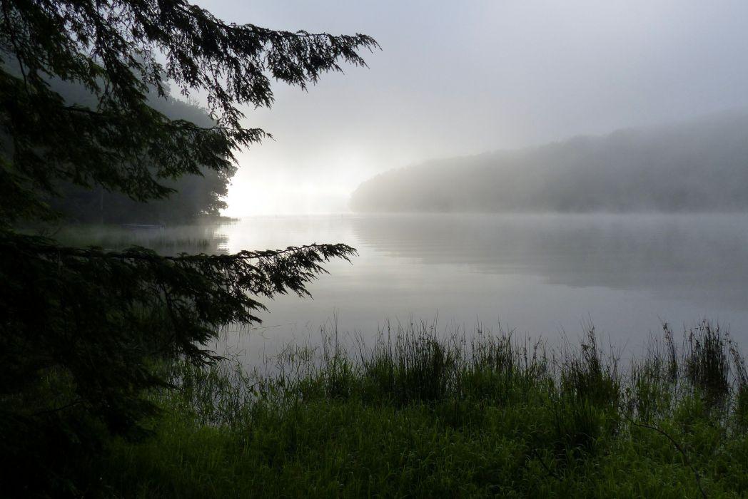 dew nature fog lake morning wallpaper