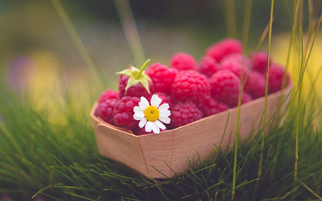 Fruit Raspberry Grass Food wallpaper