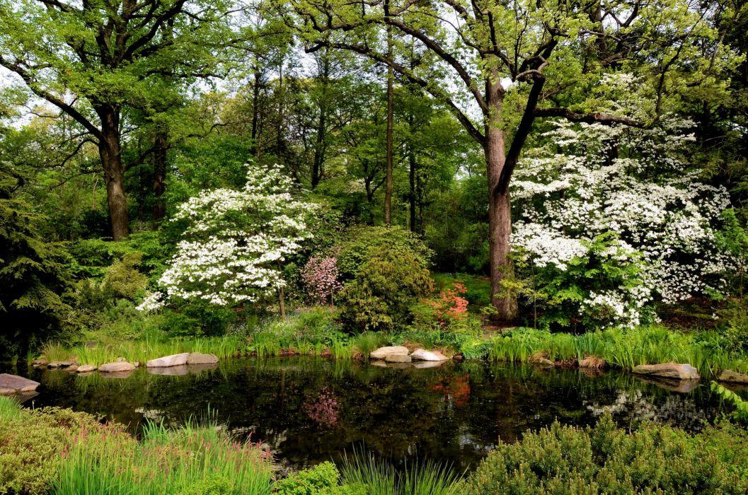 Gardens Pond USA Belmont New York City Nature wallpaper