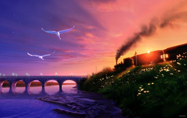 original animal bird clouds grass kagaya nobody scenic sky stars sunset train water wallpaper