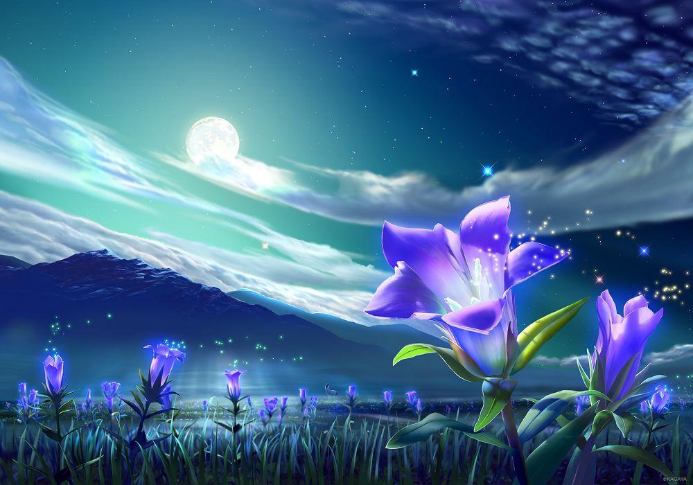 original animal clouds flowers grass kagaya landscape moon night nobody original scenic sky stars wallpaper