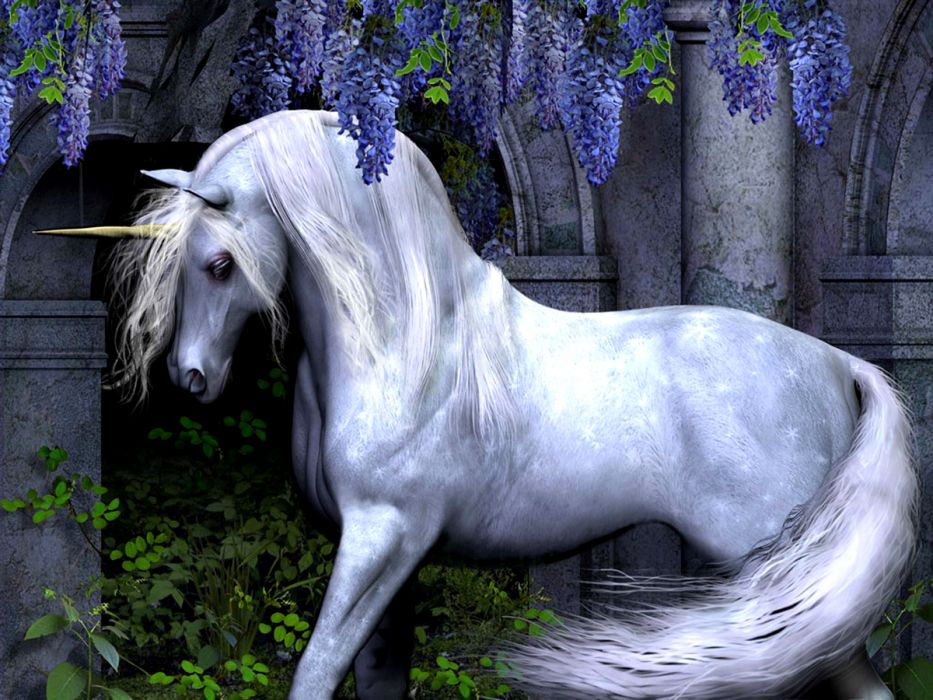 Unicorn horse magical animal y wallpaper | 1600x1200