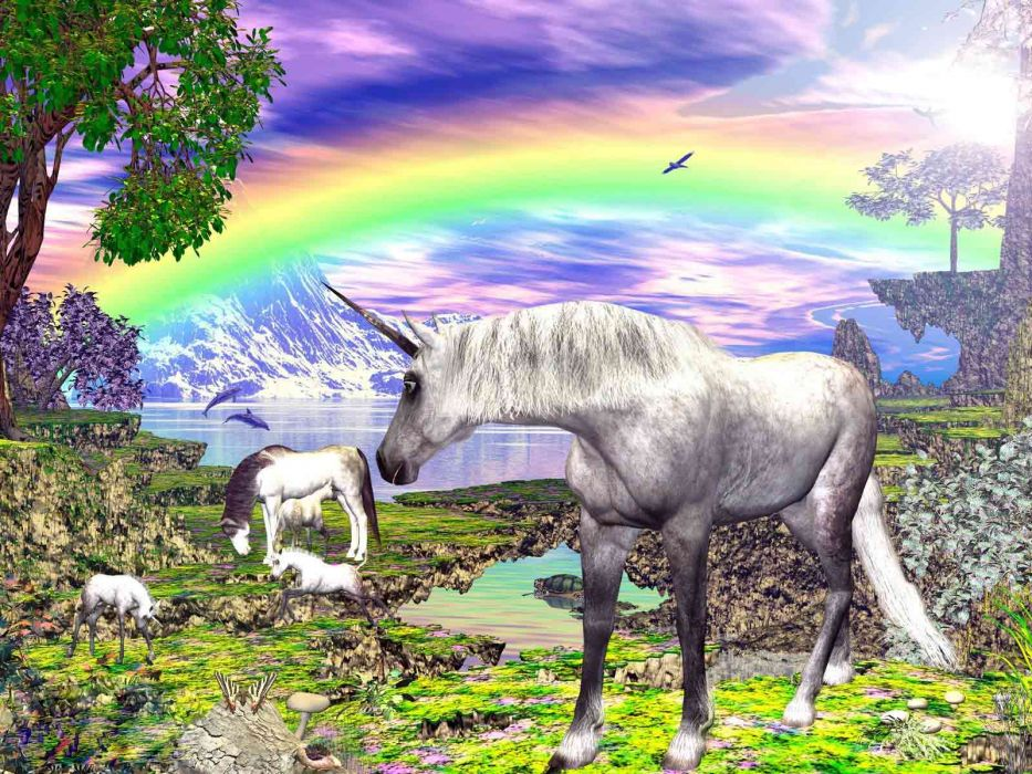 unicorn horse magical animal   yi wallpaper
