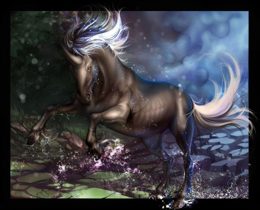 unicorn horse magical animal   ei wallpaper