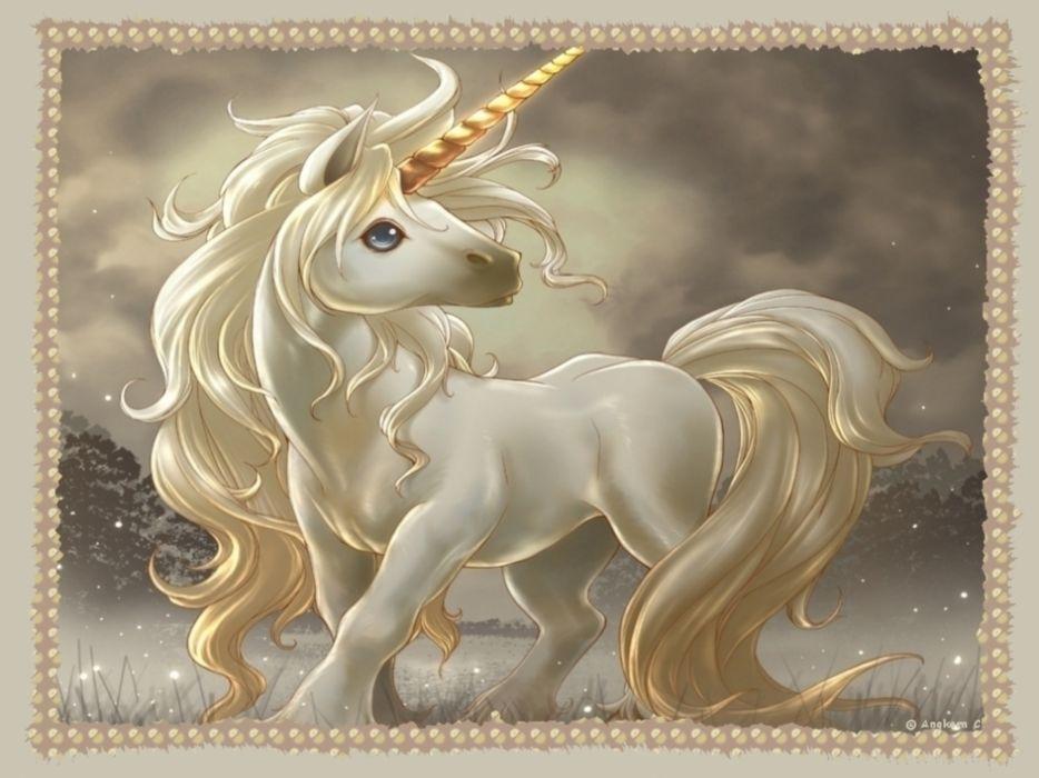 unicorn horse magical animal   re wallpaper