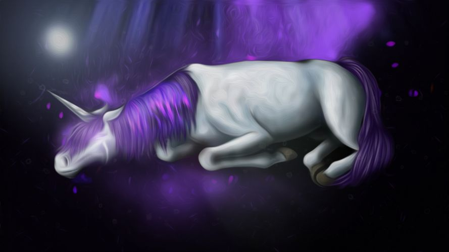 unicorn horse magical animal d wallpaper