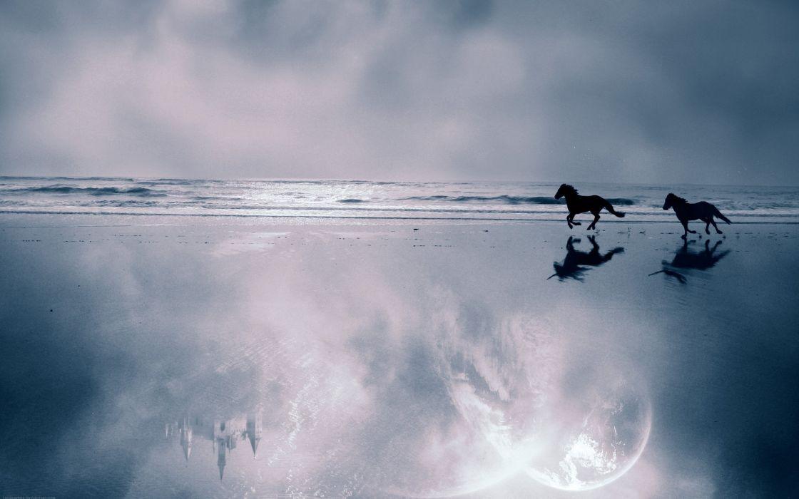 unicorn horse magical animal castle reflection beach ocean wallpaper