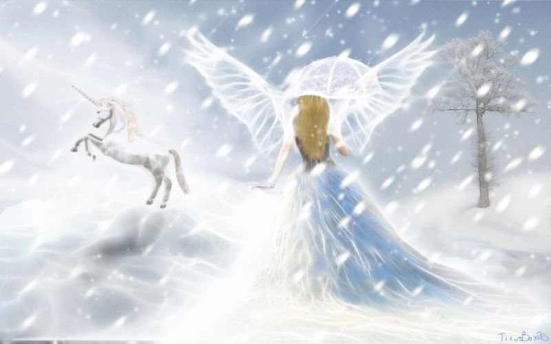 unicorn horse magical animal fairy angel mood g wallpaper