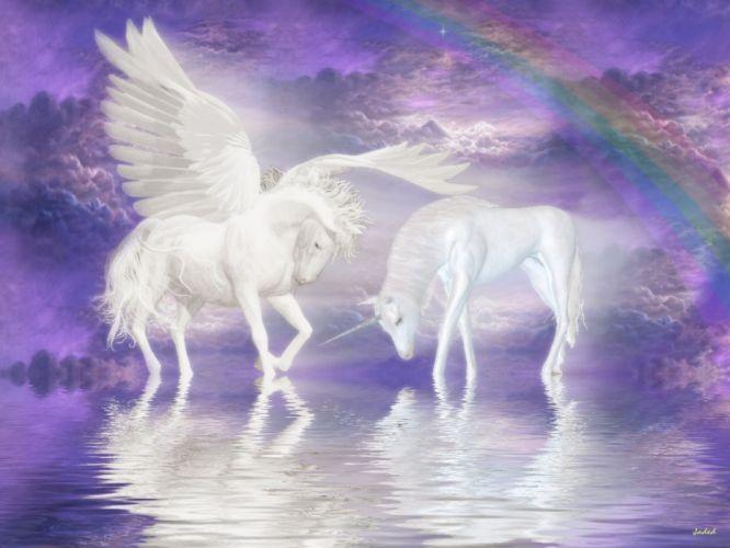 unicorn horse magical animal pegasus wallpaper