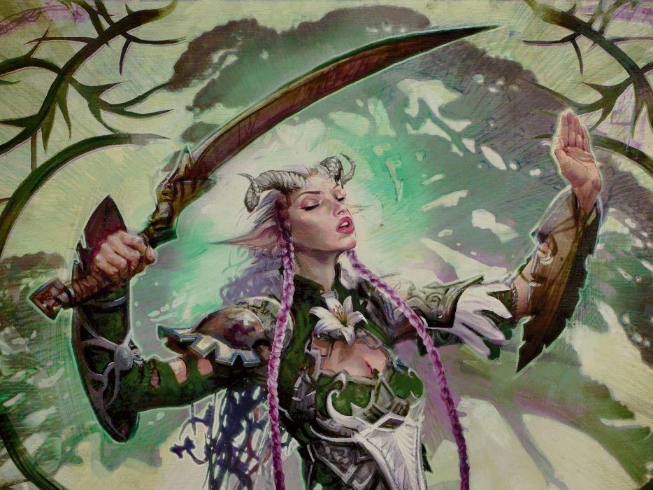 Warriors Sabre Fantasy Girls wallpaper