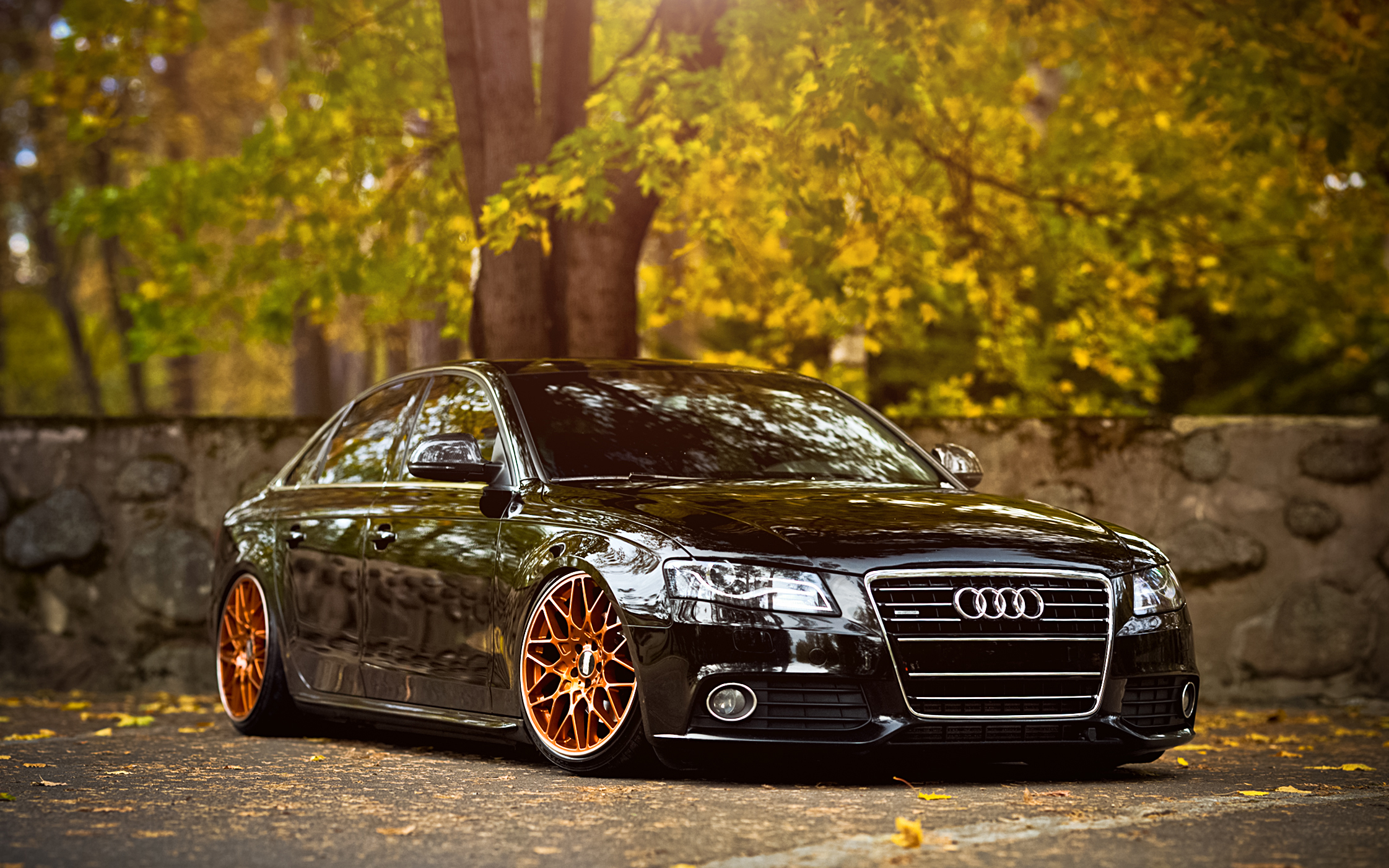 Image Result For Audi A Tuning