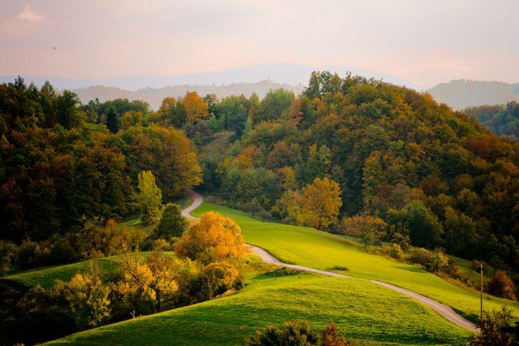 autumn road trees hills landscape wallpaper