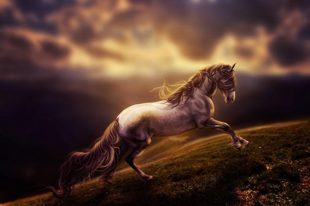 Horse Art Painting Fantasy F Wallpaper 4017x2672 174962 Wallpaperup