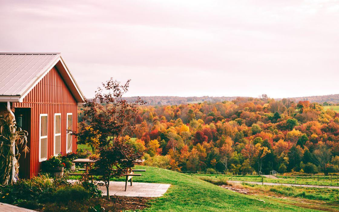 House Trees autumn    g wallpaper
