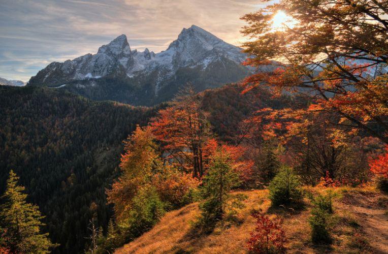 mountains autumn trees landscape wallpaper