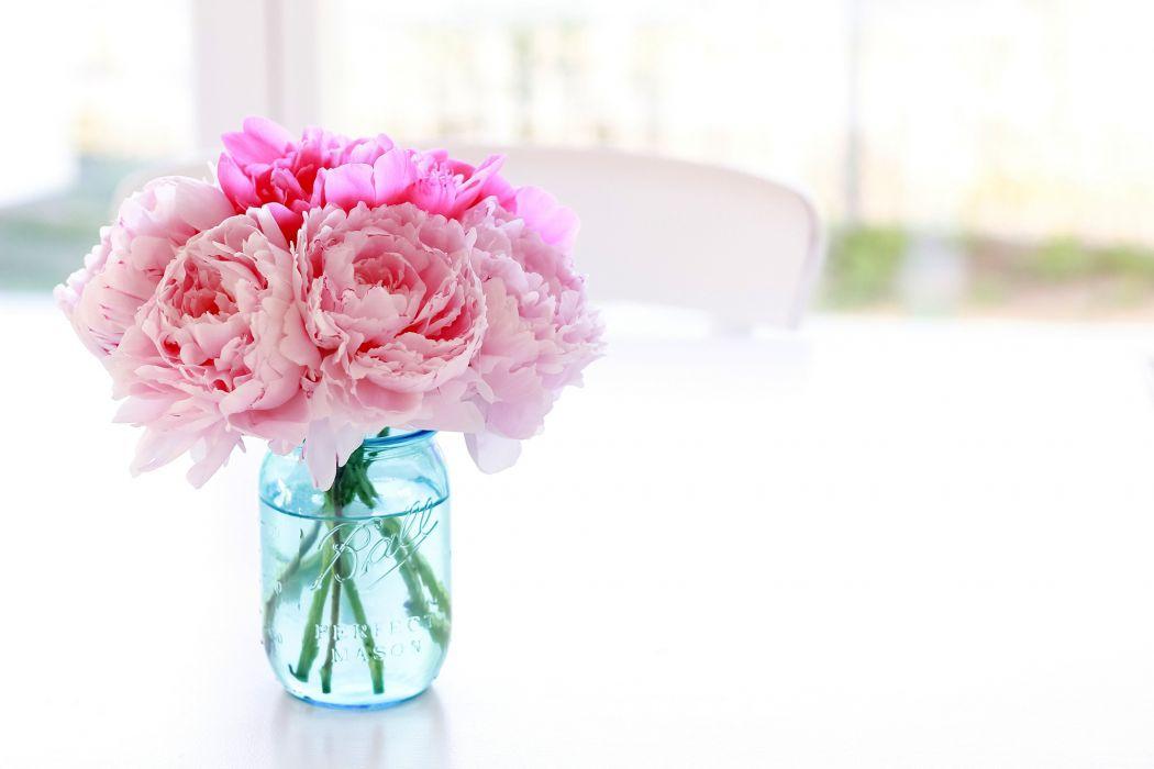 Peonies Jar Pink color Flowers bouquet bokeh wallpaper